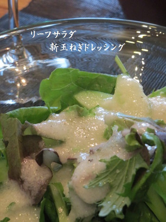 Hikaru5_096_4