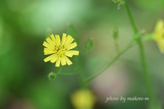 Photo_20210430141401